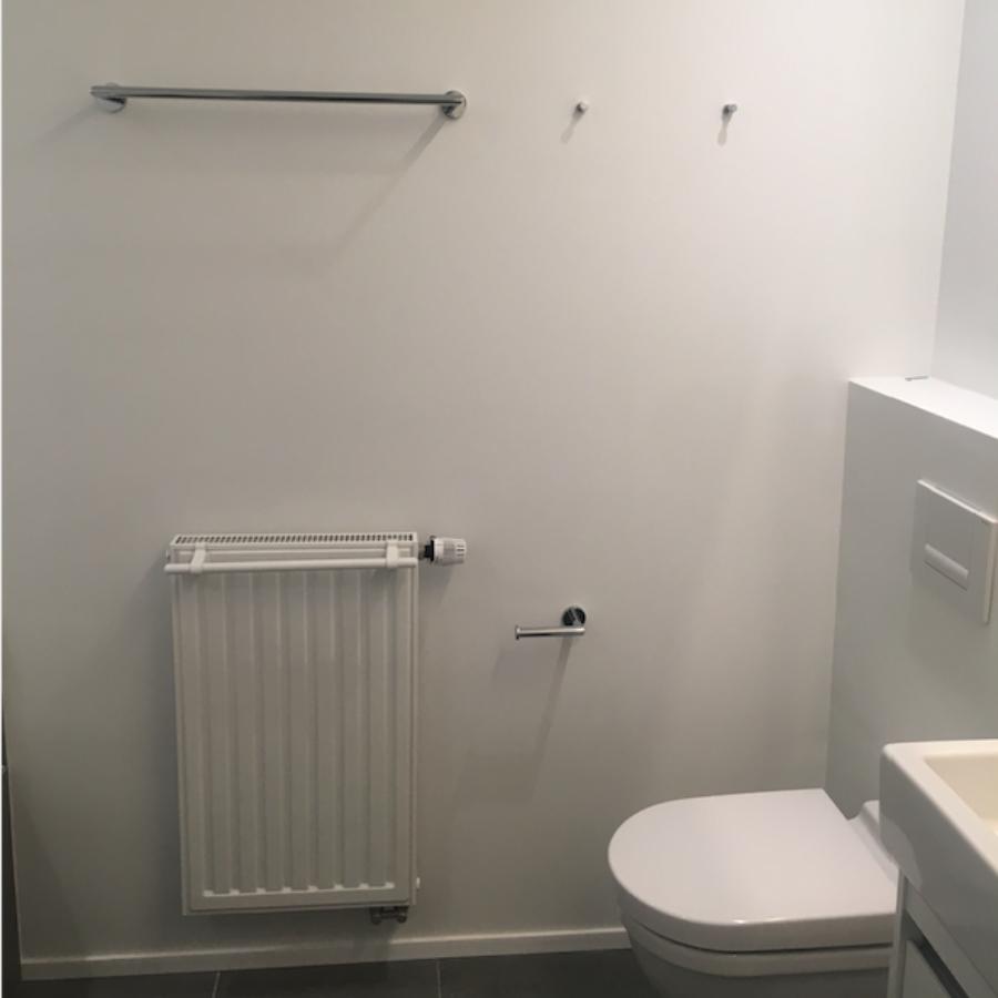 sanitaire toebehoren plaatsen, hangtoilet, handdoekdrager